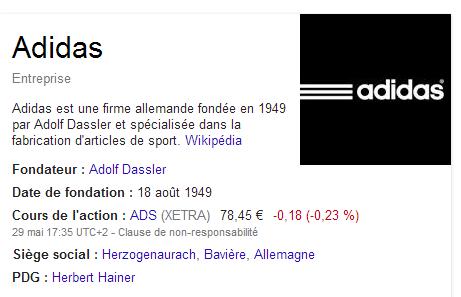 Le Knowledge Graph : des informations que Google affiche à droite de certaines pages de résultat de recherche.