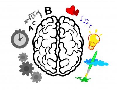 Lors d'un brainstorming, le cerveau droit prend l'ascendant sur le cerveau gauche.