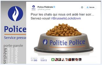 Buzz police belge : pour les chats qui nous ont aidé hier, servez-vous