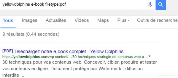 Comment s'affichent les résultats PDF sur la SERP