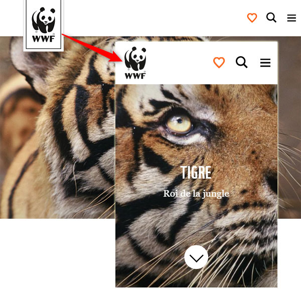 Le responsive design appliqué aux images