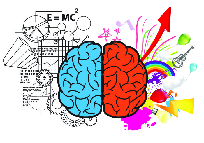 Cerveau gauche et cerveau droite - un concept réducteur