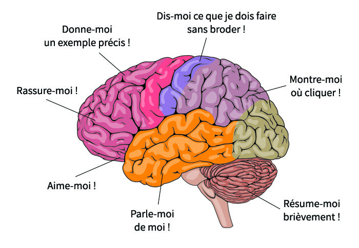 Rédaction web et neurosciences
