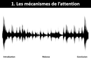 L'attention est fébrile - Rédaction et neurosciences